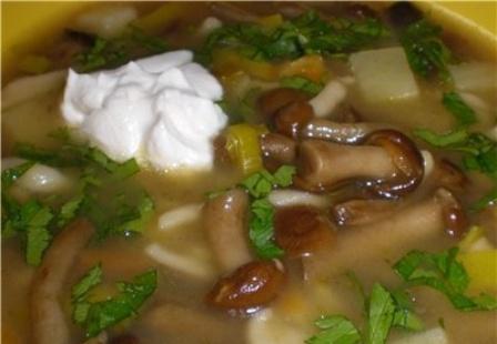 куриный суп из опят рецепты